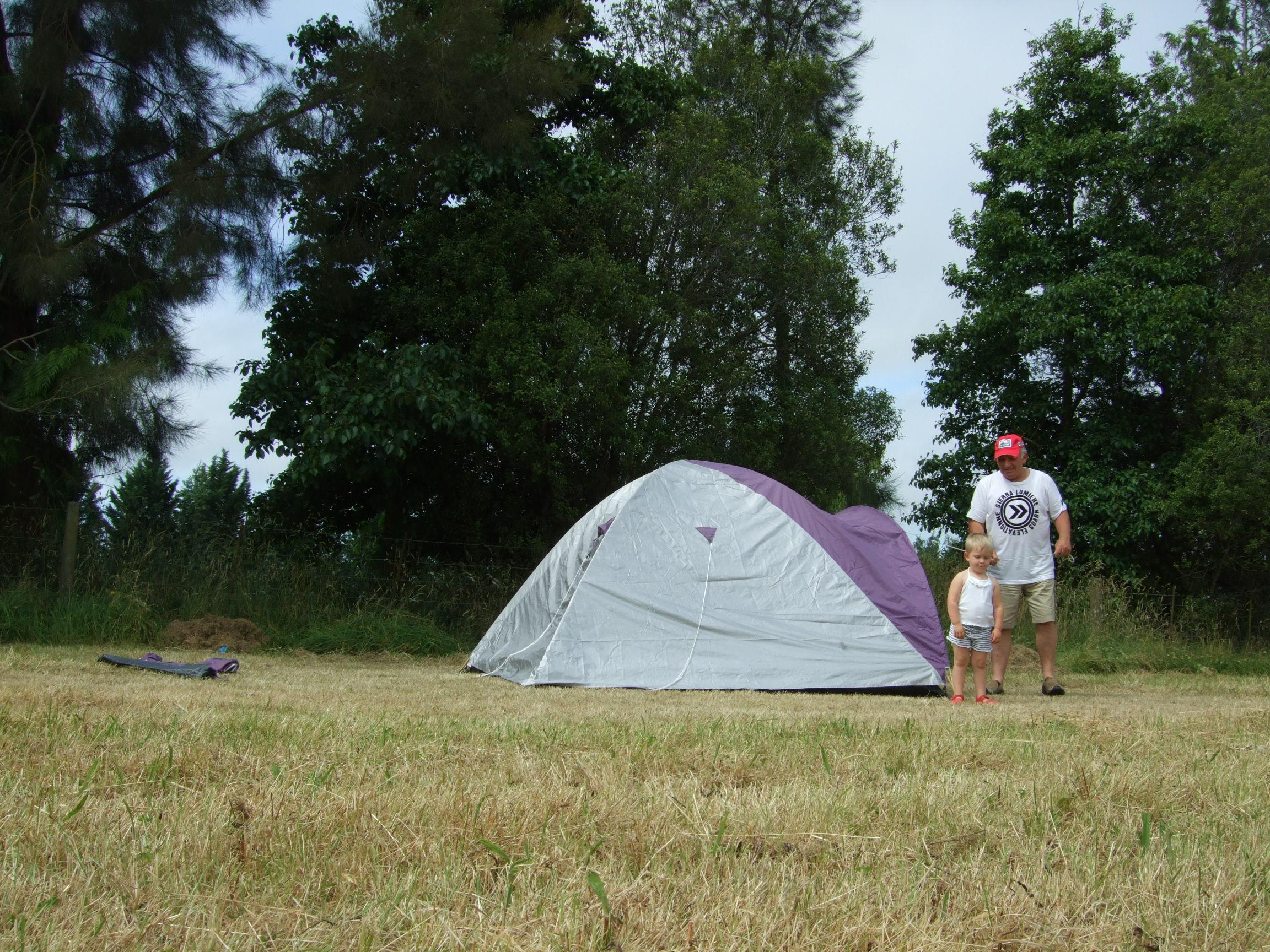 Yogi helps set up the tent