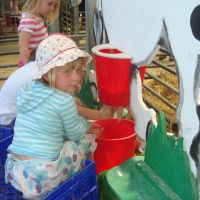 Milking - have a go