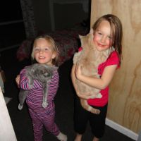 Ayla\'s cats are a huge hit with Poppy