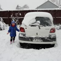 Poppy tries to wipe snow off our car