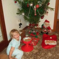 Putting out treats for Santa & Rudolph
