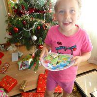 Preparing cookies for Santa