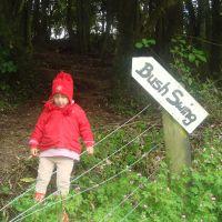 At the bush swing