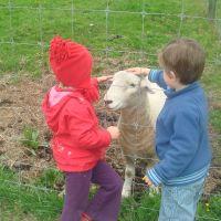 Feeding the ram