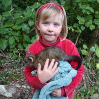 Poppy with Shanni\'s baby possum