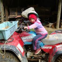 Poppy on the bike