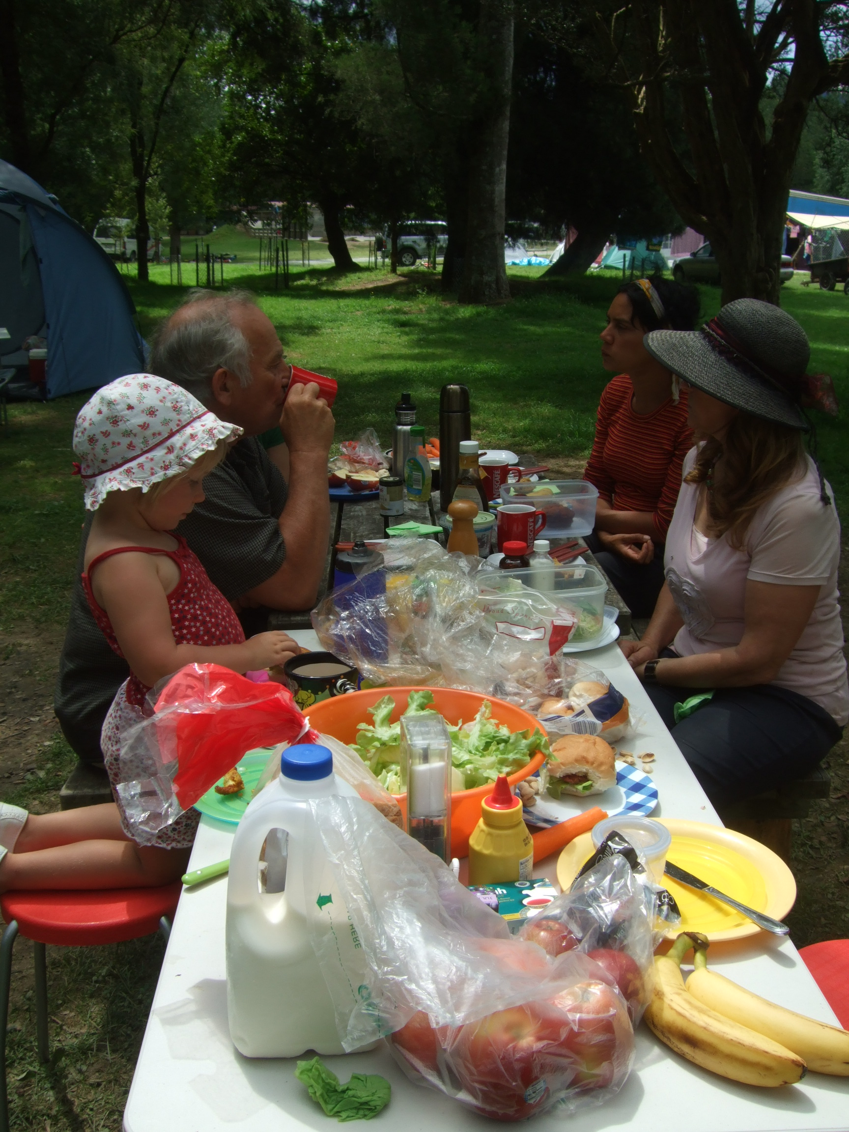 Picnic lunch with visitors