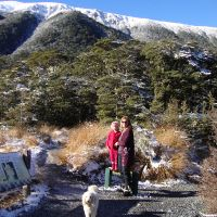 St James Walkway in the Lewis Pass