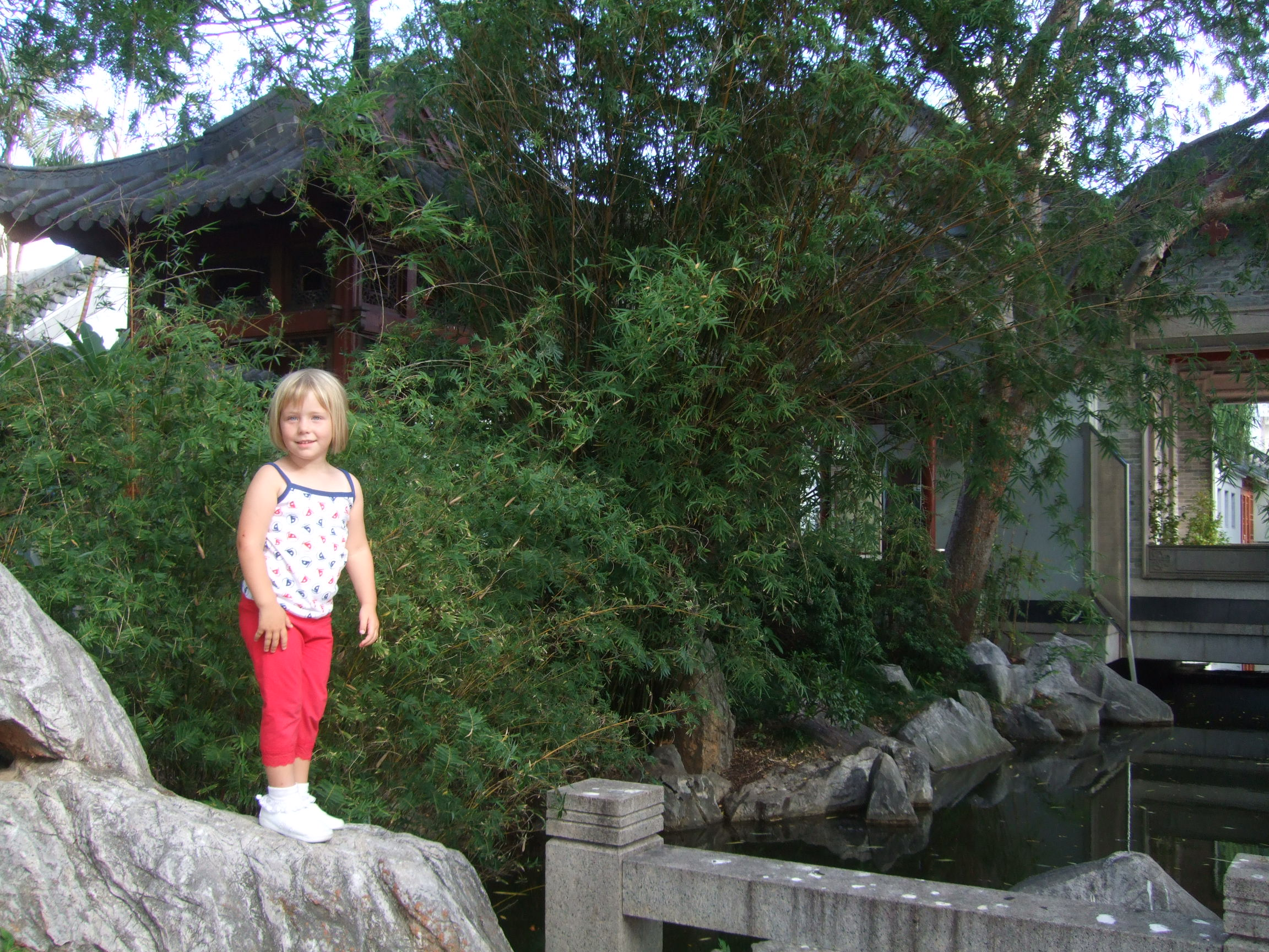 poppy-at-the-chinese-gardens